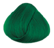 Directions Apple Green Hair Colour Kit