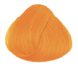 Directions Apricot  Hair Colour