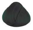 Directions Ebony Hair Colour